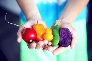 organic vegitables being held in both hands.